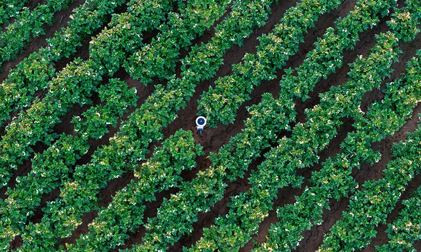 Arable Raises $20M to Digitize Agriculture and Optimize the Food System.jpg